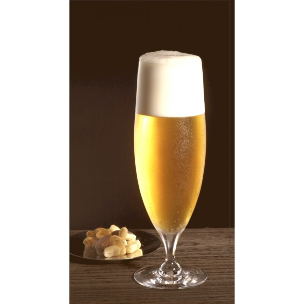Tablou decorativ canvas | Beer Glass