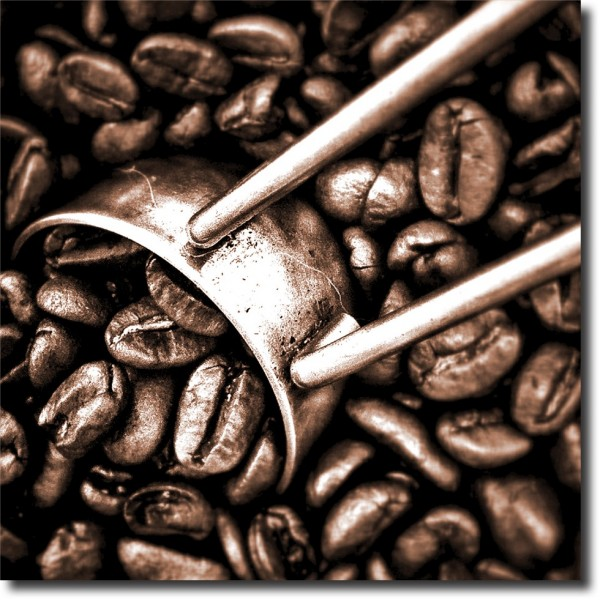 Tablou Canvas | Coffee Beans 2