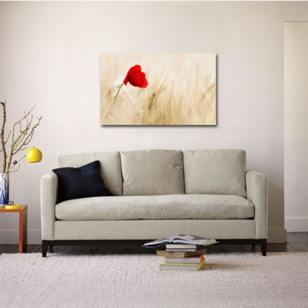 Tablou Canvas | Poppy Flower