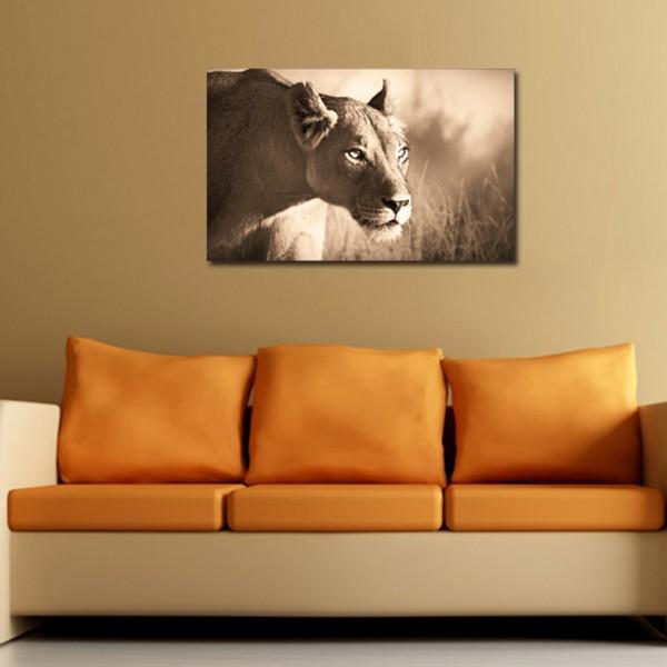 Tablou Decorativ | Lioness2