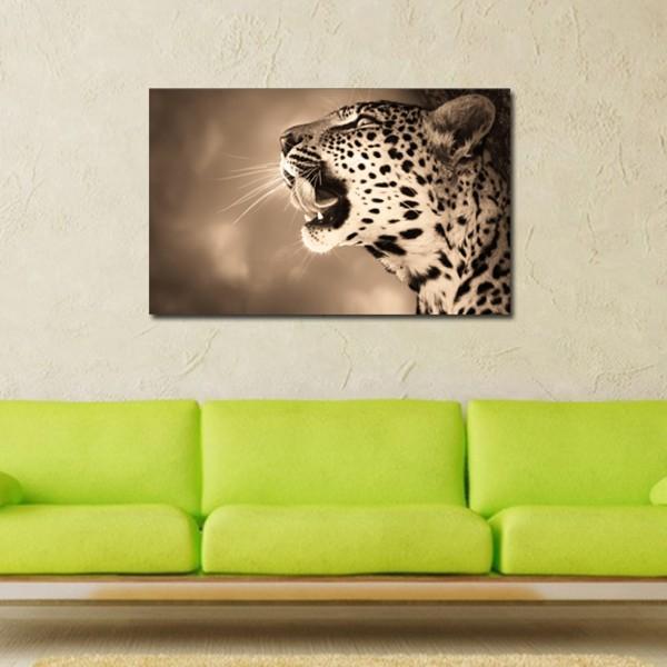 Tablou Decorativ | Tiger