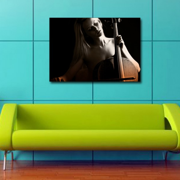 Tablou Decorativ | Hot Cello