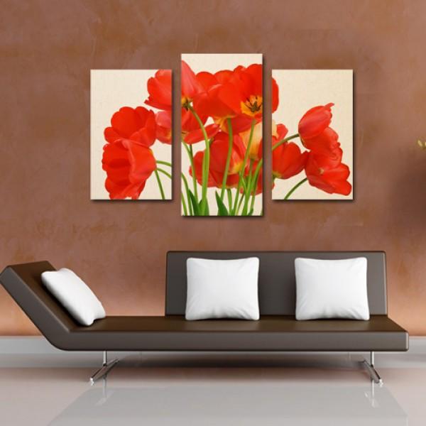 Tablouri canvas din 3 piese | Flori de Mac